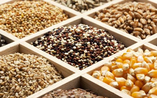 биостимуляторы для обработки семян