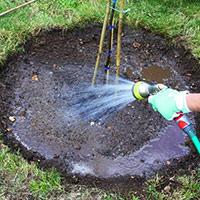 Посадка саженцев весной как часто поливать