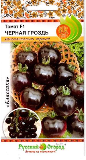 Черные помидоры лучшие сорта: посадка и уход