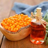 Как приготовить облепиховое масло из косточек. Получение облепихового масла в домашних условиях