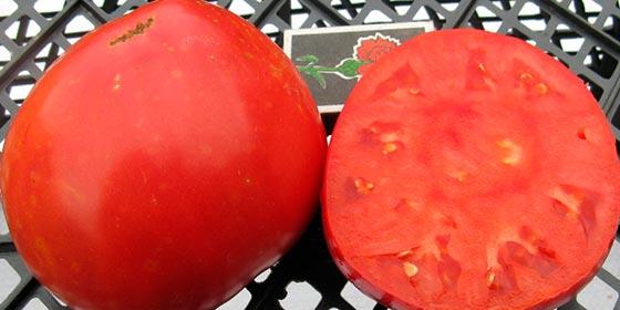 фото помидор шапка мономаха