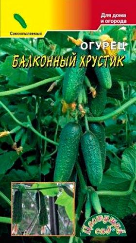 Где лучше выращивать огурцы в тени или на солнце