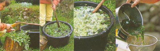 Как приготовить настои из органики для удобрения