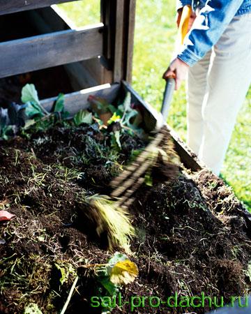 Удобрения для растений на даче, компост