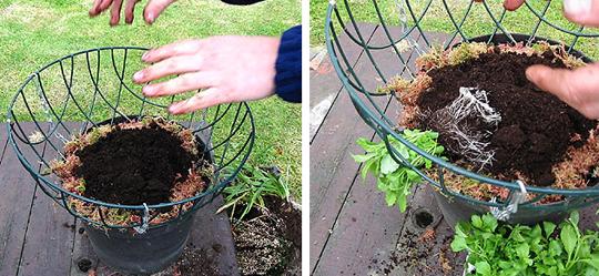 Подвесная корзина для ампельных растений