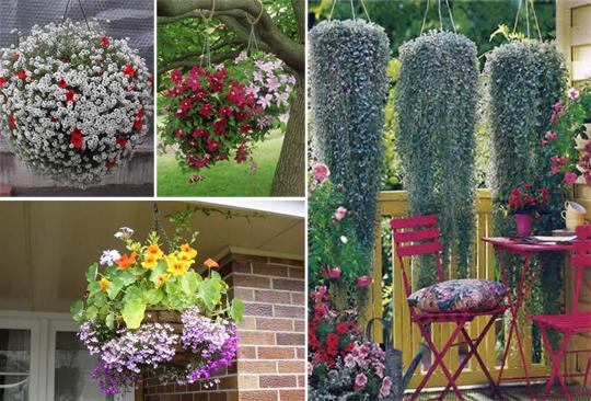 Подвесная корзина для ампельных растений в саду