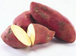 Сладкий картофель — батат