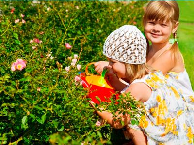 ребенок съел ядовитое растение