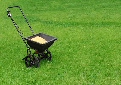 Подкормка газона