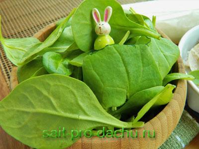 рецепты салатов с замороженным шпинатом