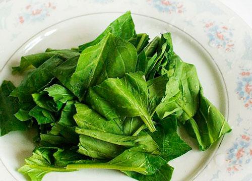 простой салат из шпината рецепты с фото