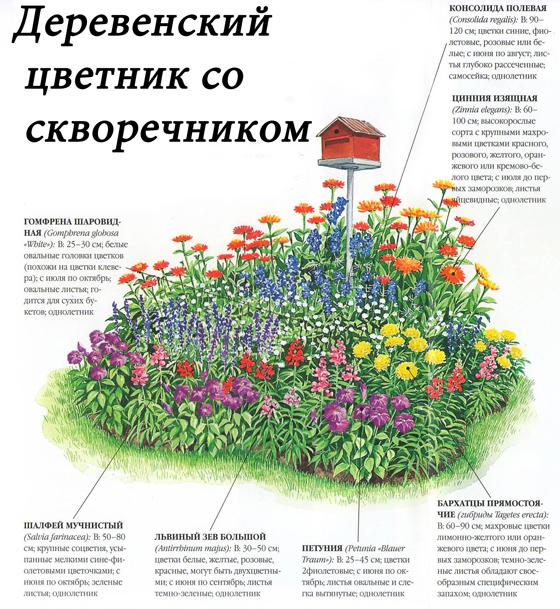 Схема деревенского цветника со