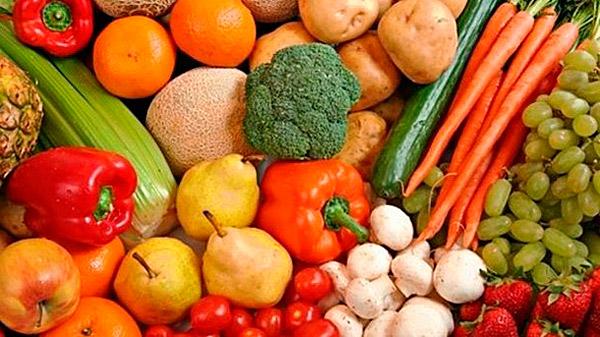 органическое земледелие практика