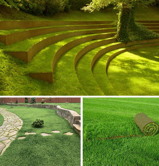 Рулонный газон в вашем саду