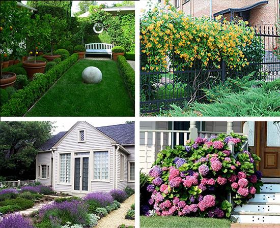 Использование кустарников в саду