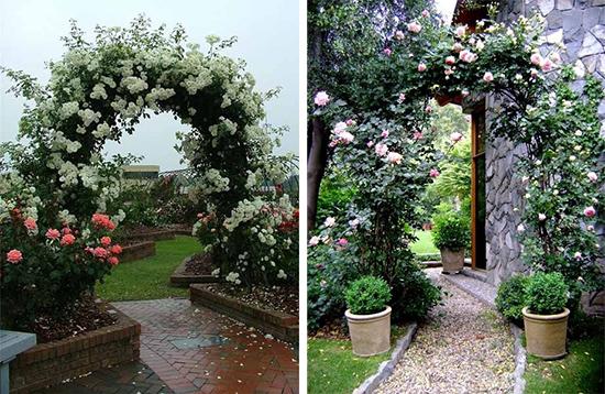 Красивые арочные конструкции для вьющихся роз