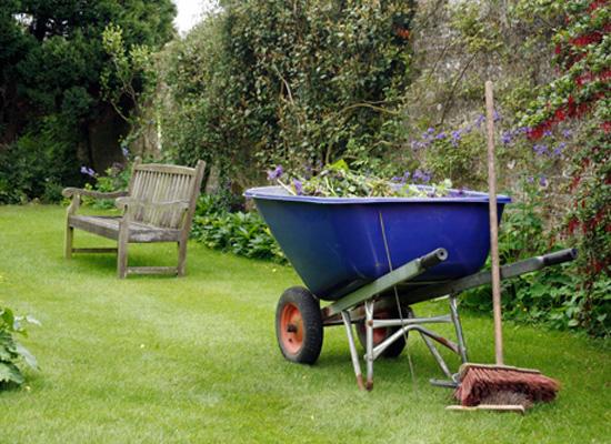 Осенняя уборка в саду