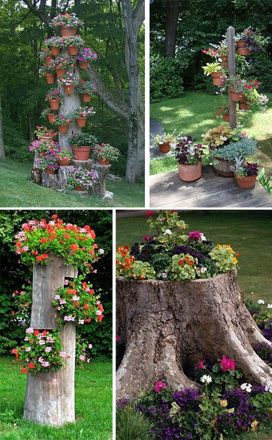 Старые деревья в садовом дизайне