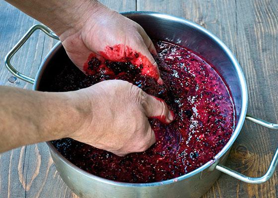 Как сделать наливку из черной смородины на водке