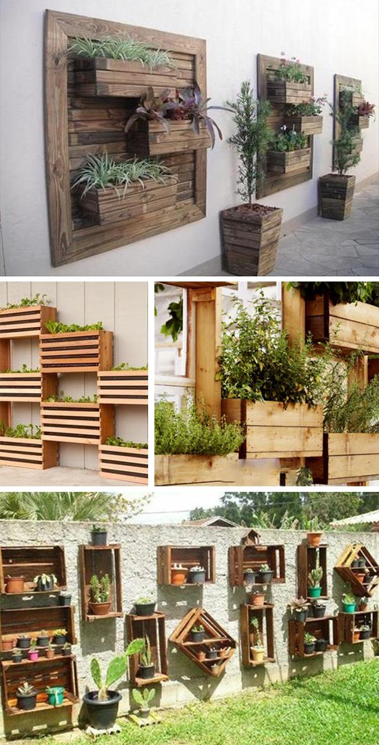 Вертикальное озеленение с помощью ящиков