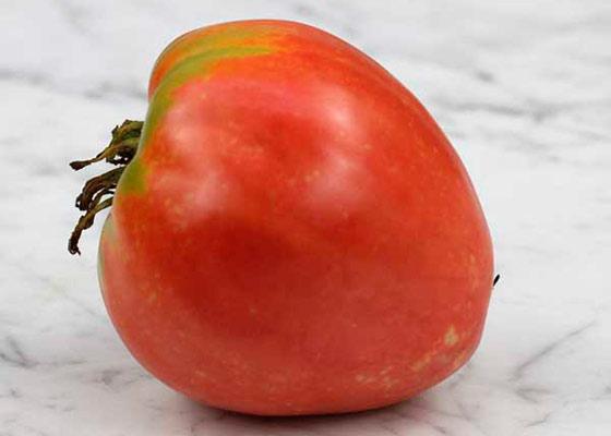 томаты любимый праздник описание и фото